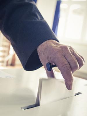 Large ballot