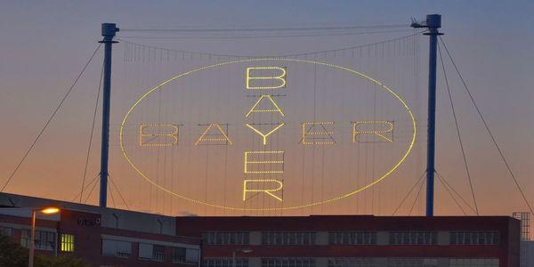 Large bayer2