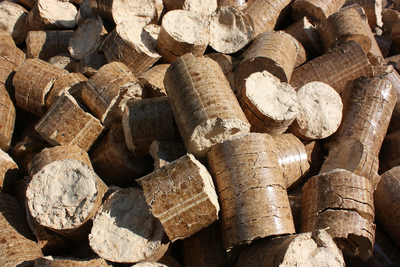 These wooden pellets are the cooking medium taking the outdoor grilling industry by storm.