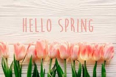 Medium spring