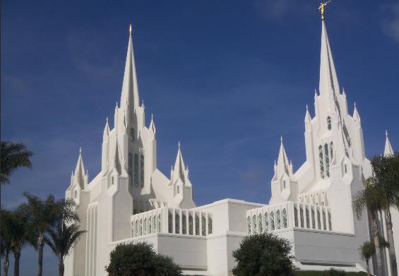 Large mormon