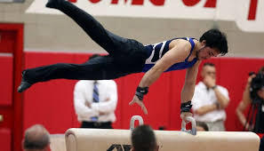 Hoffman Estates takes over hosting duties for the boys gymnastics state finals for the next three years
