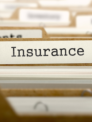Large filedinsurance