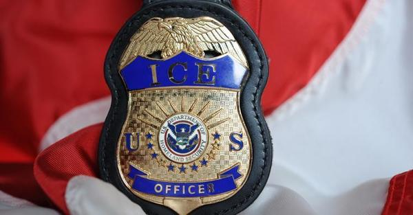 Large immigrationcustomsenforcement