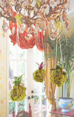 This project will leave you with a lovely hanging holiday decoration.
