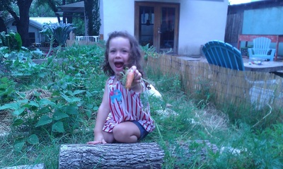 Mary Raindrop Young picks carrots for our morning snack.