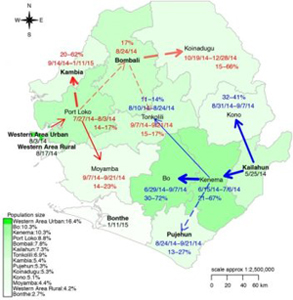 This map indicates the transmission of the Ebola virus in Sierra Leone.