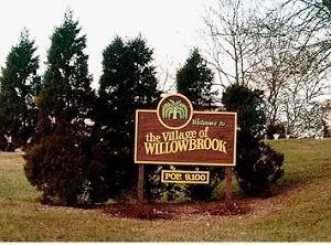 Medium willow
