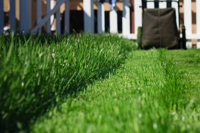 With spring comes the never-ending chore of lawn maintenance.