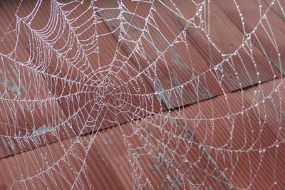 Medium web 1000x667