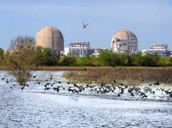 NRC announces new reactor application meeting for South Texas Project site.