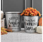 Galvanized Harvest Buckets
