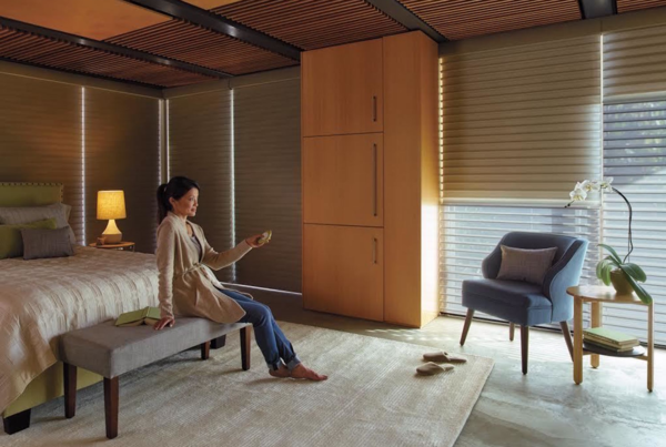 Powerized automatic window treatment options from Austin Window Fashions provide convenience and are more affordable than ever before.
