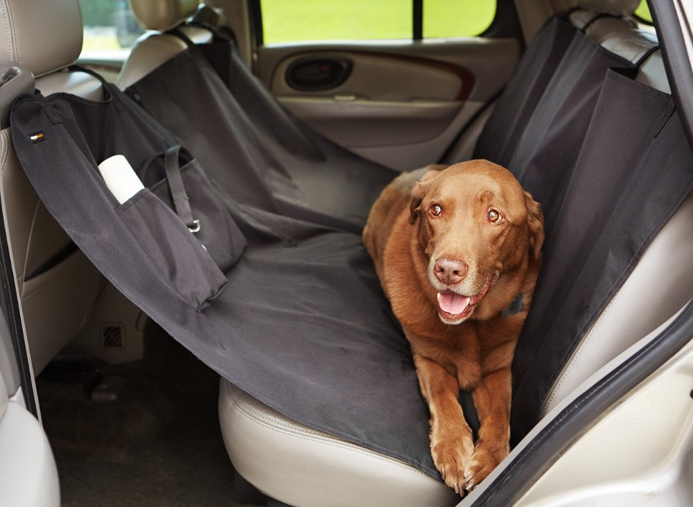 Ultimate Pet Services offers animal support including a pet taxi service.