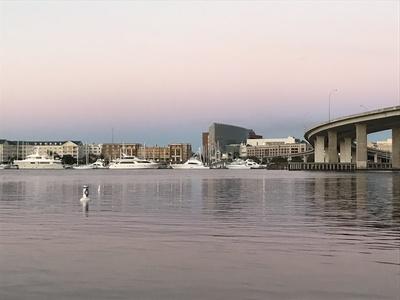 City of Charleston Skyline