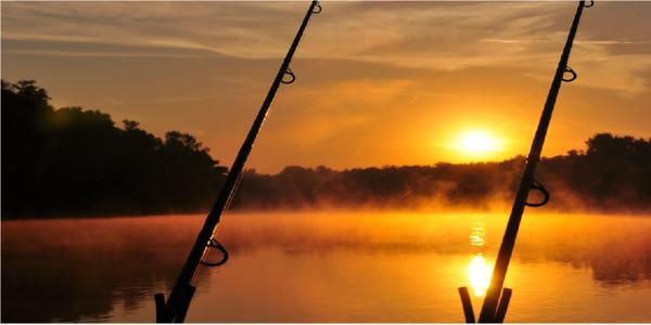Large fishing