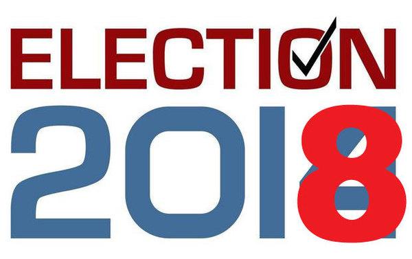Large election2018