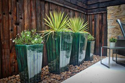 Blackfoot daisies and yucca are two great native plant options.