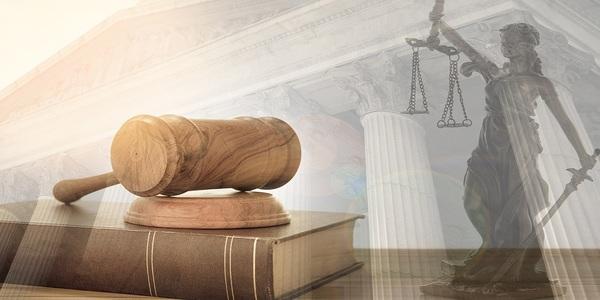 Large law2