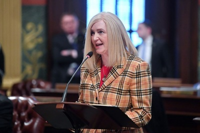 Rep. Andrea Schroeder (R-Independence Township) speaks on the House floor in March 2019.