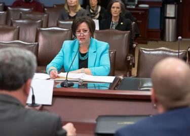 State Rep. Marcy Toepel (R-Dist. 147) wants gambling revenue funding priorities changed.
