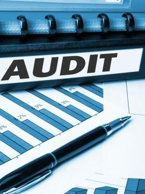 Large audit