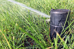 Sprinkler heads are subjected to a lot of dirt and debris during the year.