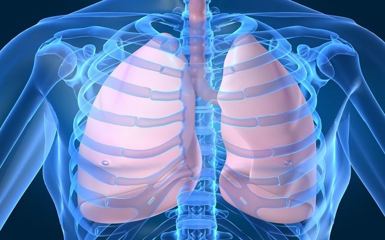 Boehringer Ingelheim researchers test nintedanib on patients with severe lung disease.