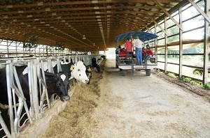 A group of people tour the Hastings Dairy in Ohio.