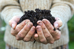 Dillo Dirt serves as a compost that adds to the organic matter in the soil, reducing watering. Organic matter feeds the microbes in the soil as well as plants, making a more healthy environment.