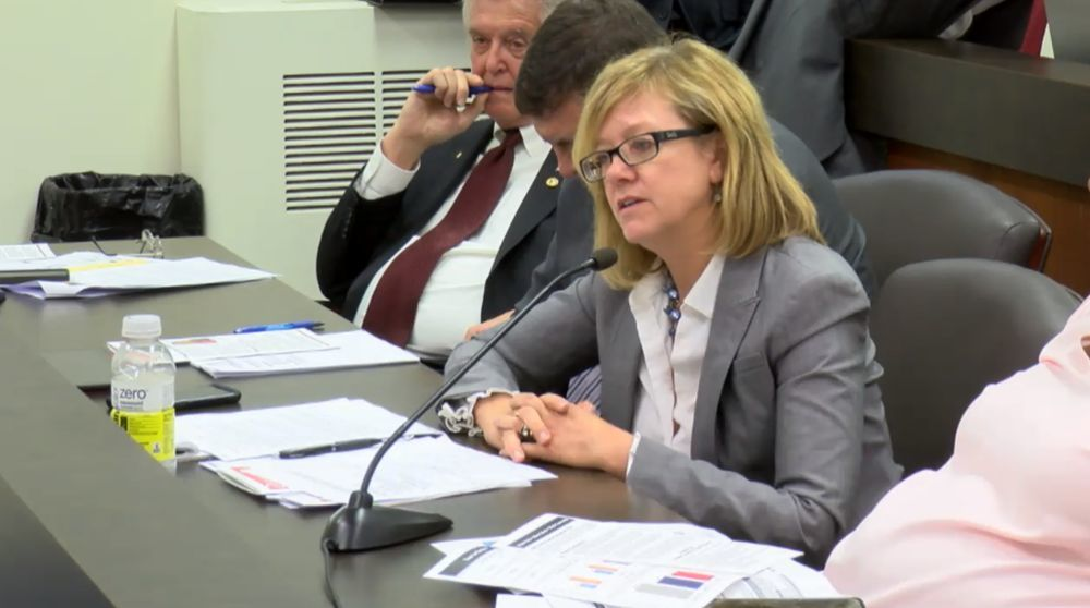 Rep. Jeanne M Ives (R-Wheaton) questioning evidence based funding at the May 22 House Appropriations meeting.