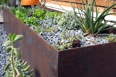 Steel is becoming a more popular option for outdoor planters in the Austin area.