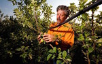 The foundation aims to improve organic farming systems and cultivate organic research, education and federal policies.