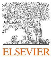 Elsevier recently named the recipients of Qatar University Scientists 2015 Scopus Awards.
