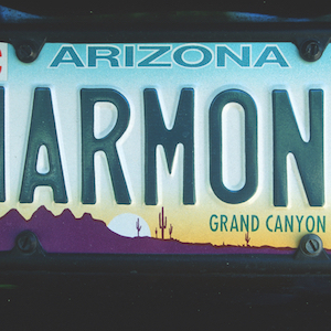Arizona drivers can purchase specialty plates to aid charity.