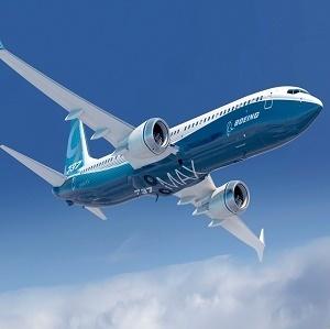 Large 737max300
