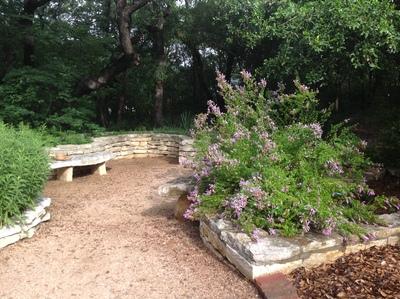 This garden features native Texas herbs, such as Mexican oregano.