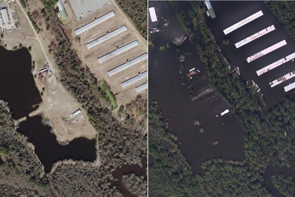 Inundated swine waste pool in Sloan