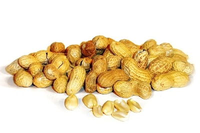 Preventing peanut allergies will improve lives and lower health care costs.