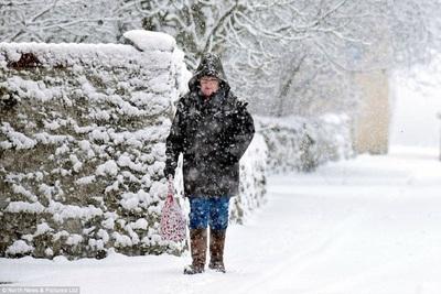 Medium snowverycold