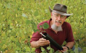 Northern Arizona University's Thomas Whitham receives award for conservation, education