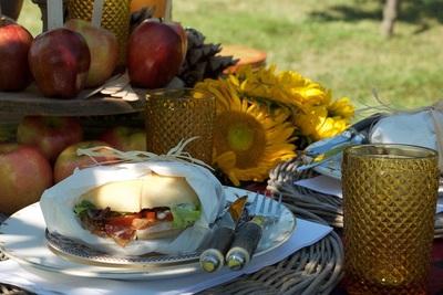 Medium picnic