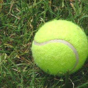 Medium tennisball