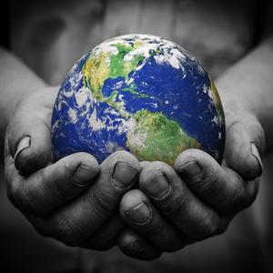 Medium sustainability