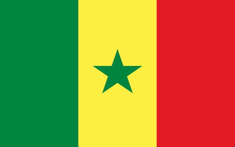 Senegal's peer review process, including its country review, will be filed with the African Union.