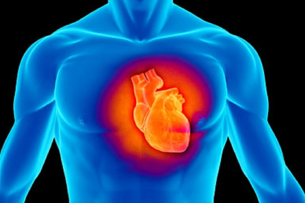 The key secondary composite endpoint involved whether the drug could reduce cardiovascular death.