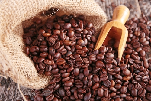 """Currently, BioNovelus is committed to supporting the coffee industry's battle against a devastating fungus called """"Coffee Rust"""""""