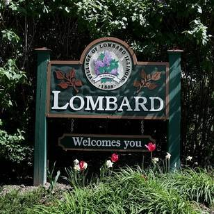 Medium lombard