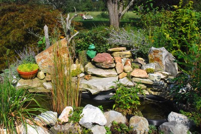 A rock garden can be a truly unique addition to your yard.
