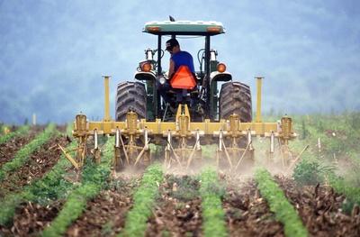 Medium farming